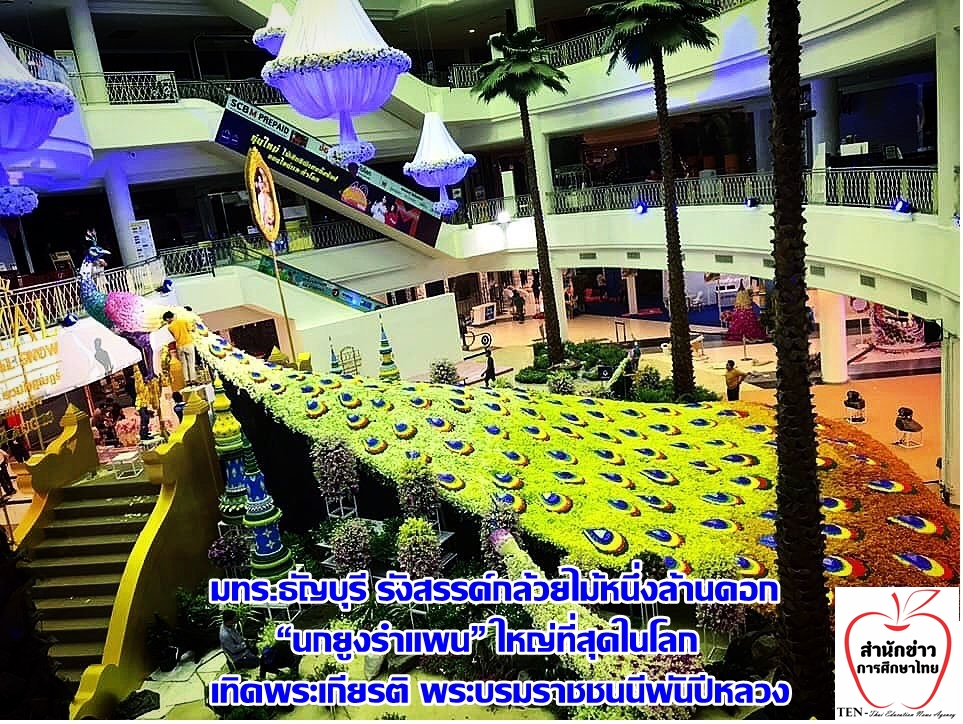 """มทร.ธัญบุรี รังสรรค์กล้วยไม้หนึ่งล้านดอก """"นกยูงรำแพน"""" ใหญ่ที่สุดในโลก เทิดพระเกียรติ พระบรมราชชนนีพันปีหลวง"""
